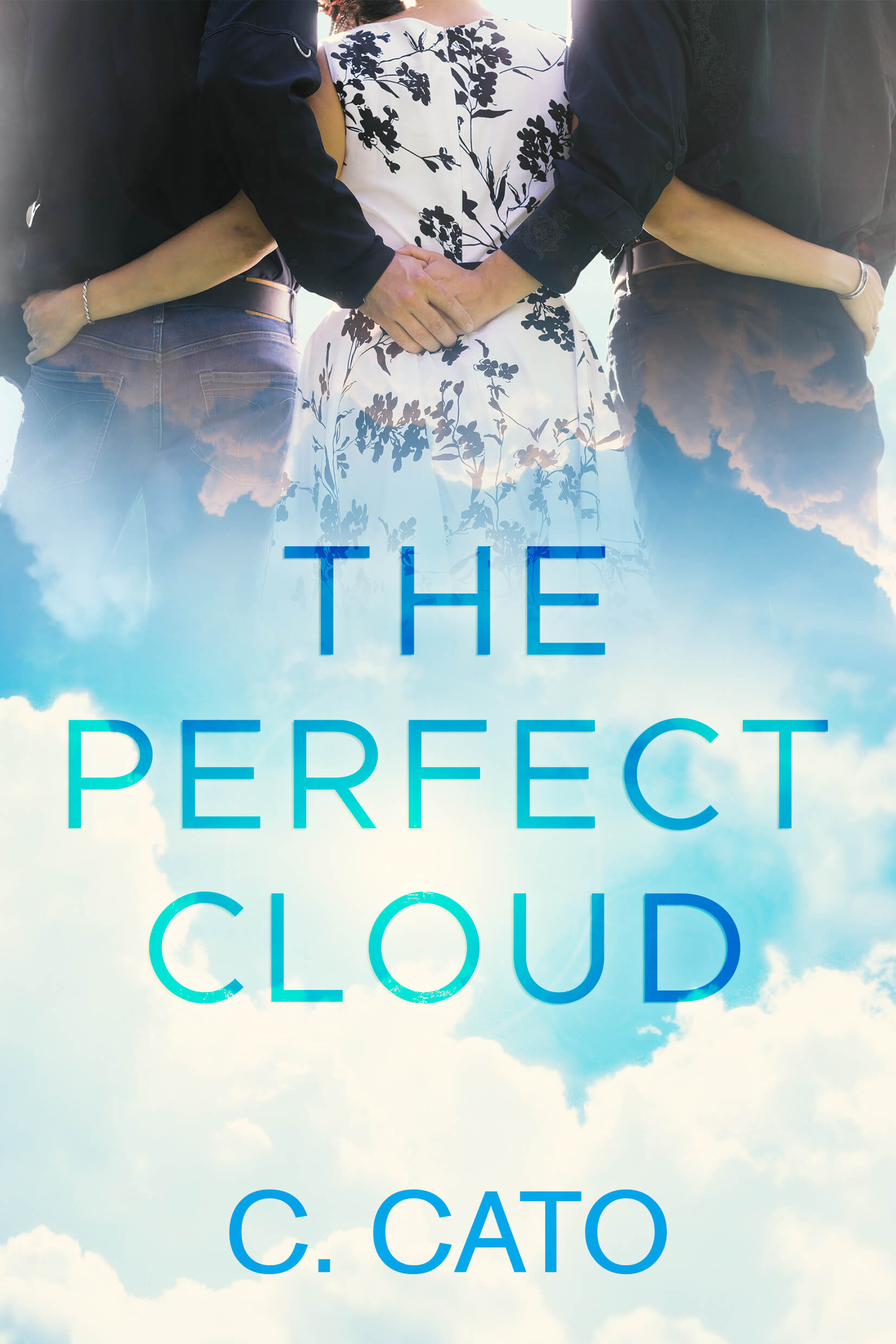 The Perfect Cloud - C. Cato